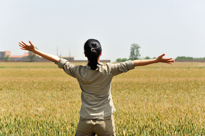 Woman free from eating disorder, in field of wheat